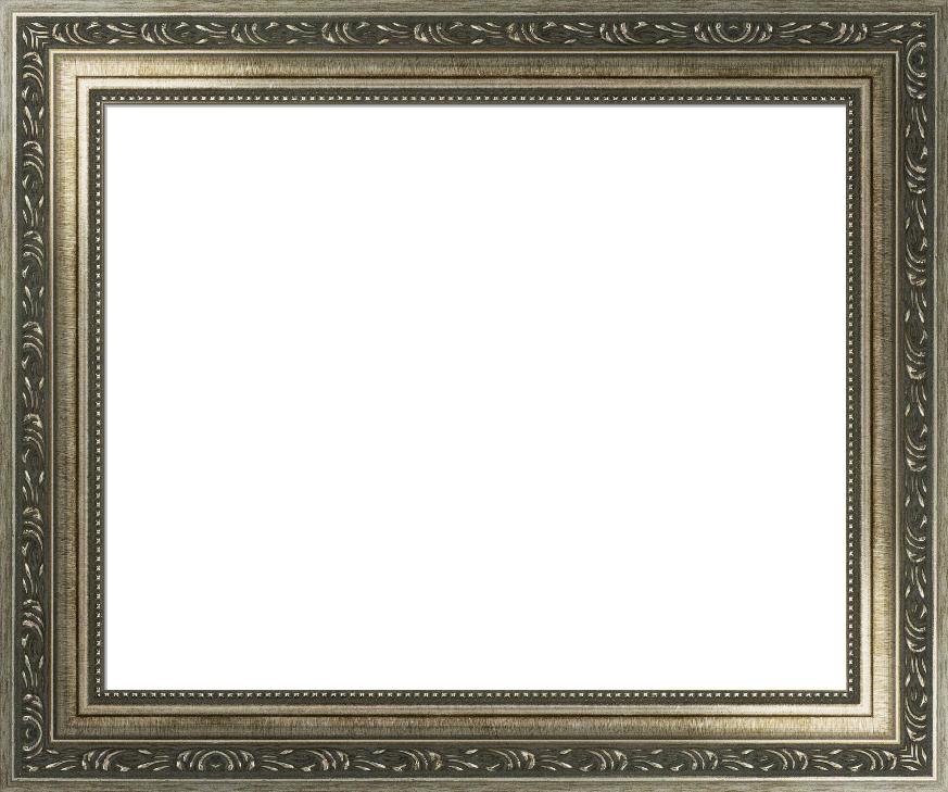 Ornate Silver Scoop Frame, Baroque Custom Frame I FramedIt