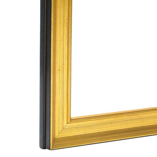 Legacy Light Gold Federal Frame